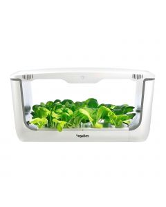 VegeBox Home With Greens